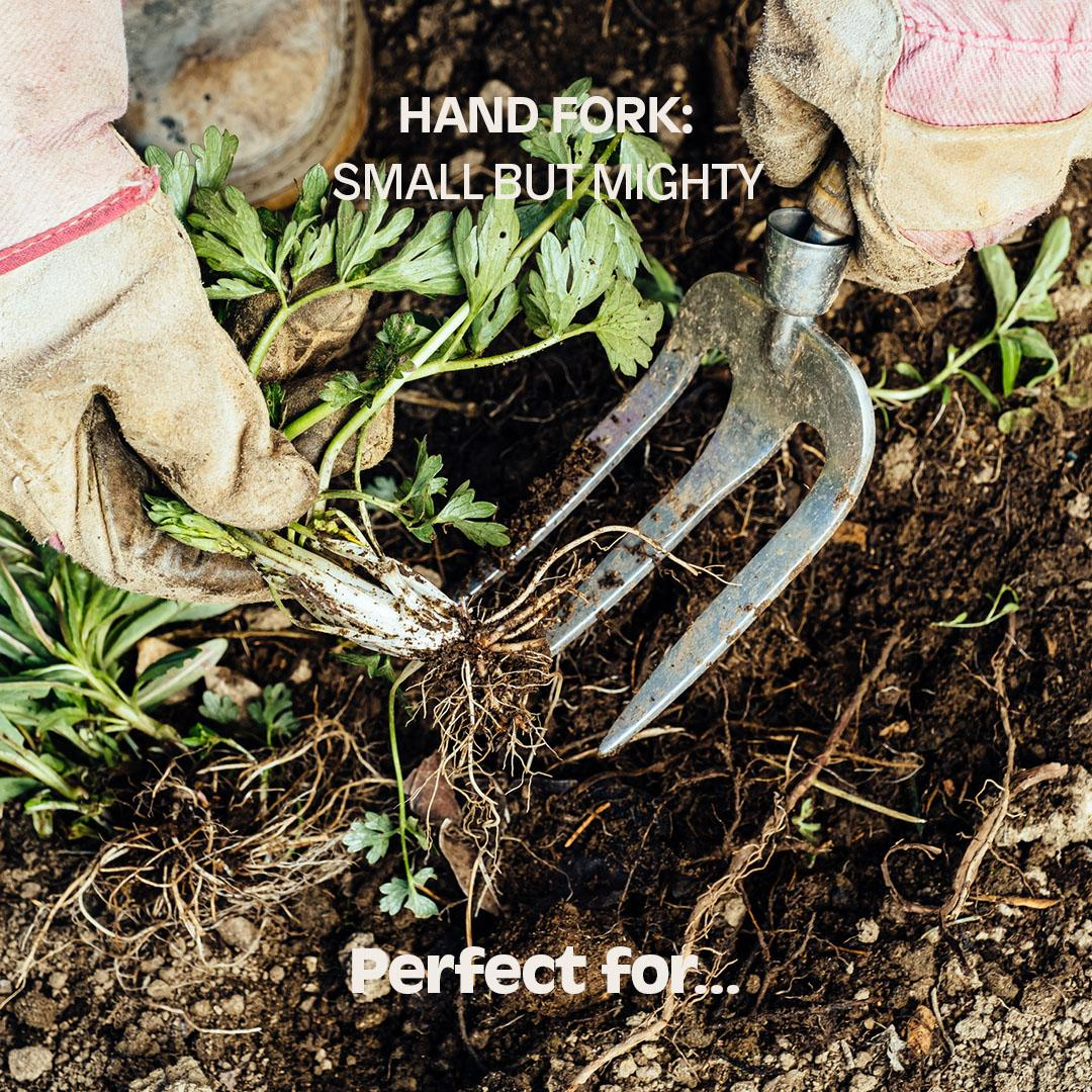 HAND FORK: Small but mighty. Perfect for...