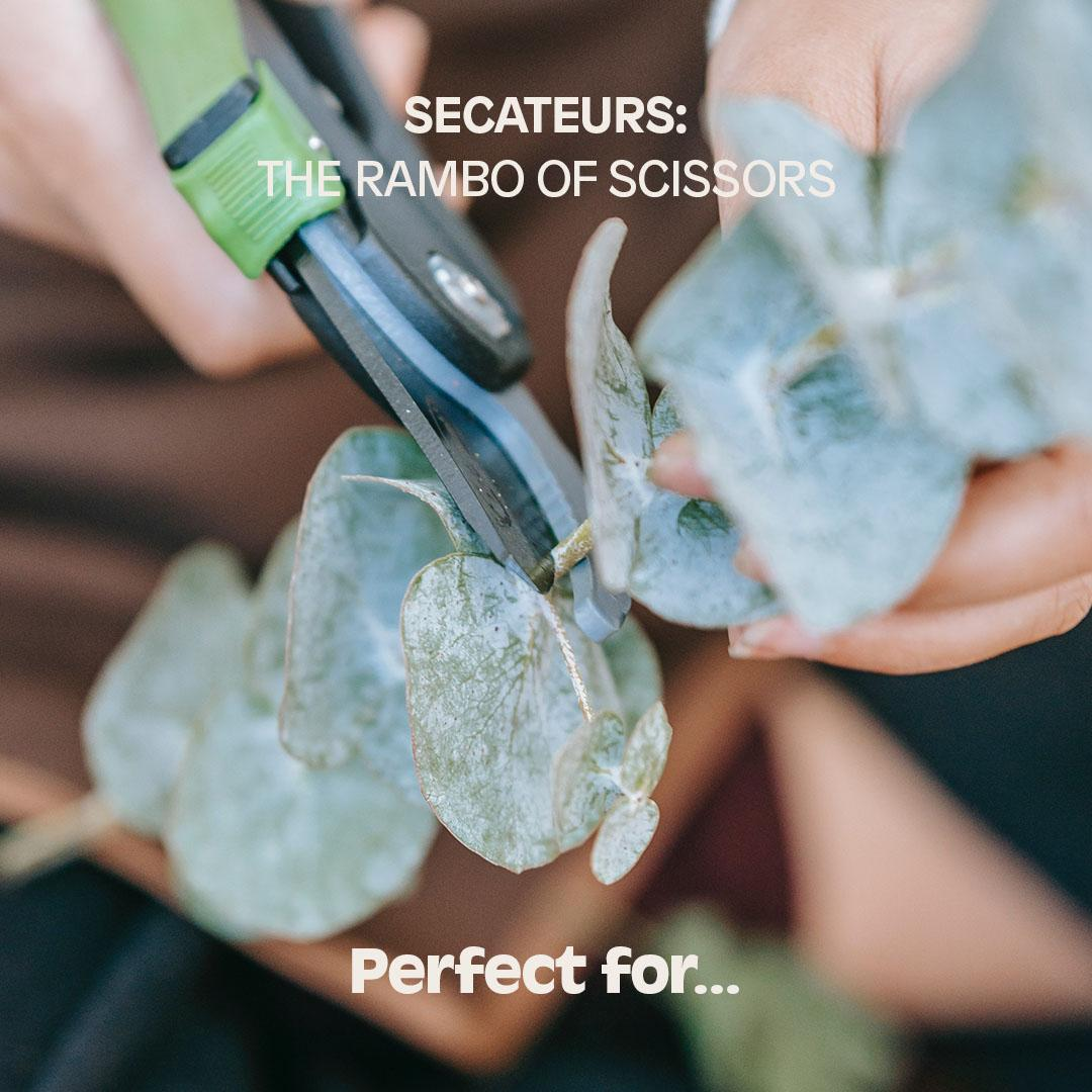 SECATEURS: The Rambo of scissors. Perfect for...