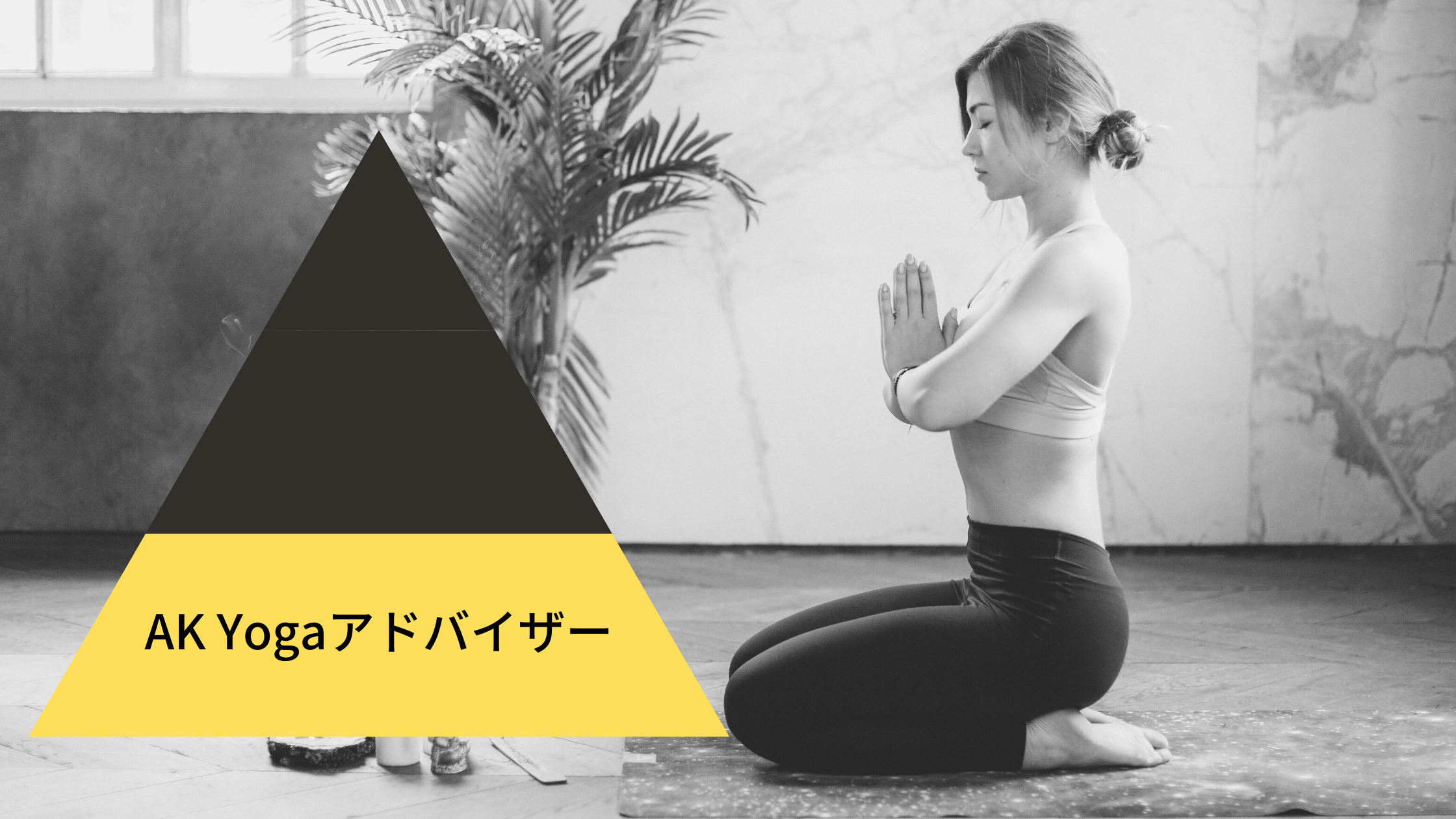 AK Yoga Advisor Course image