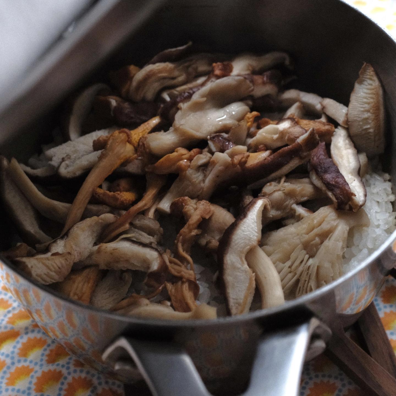 perilla-mushroom-rice