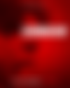 Schumacher Cover