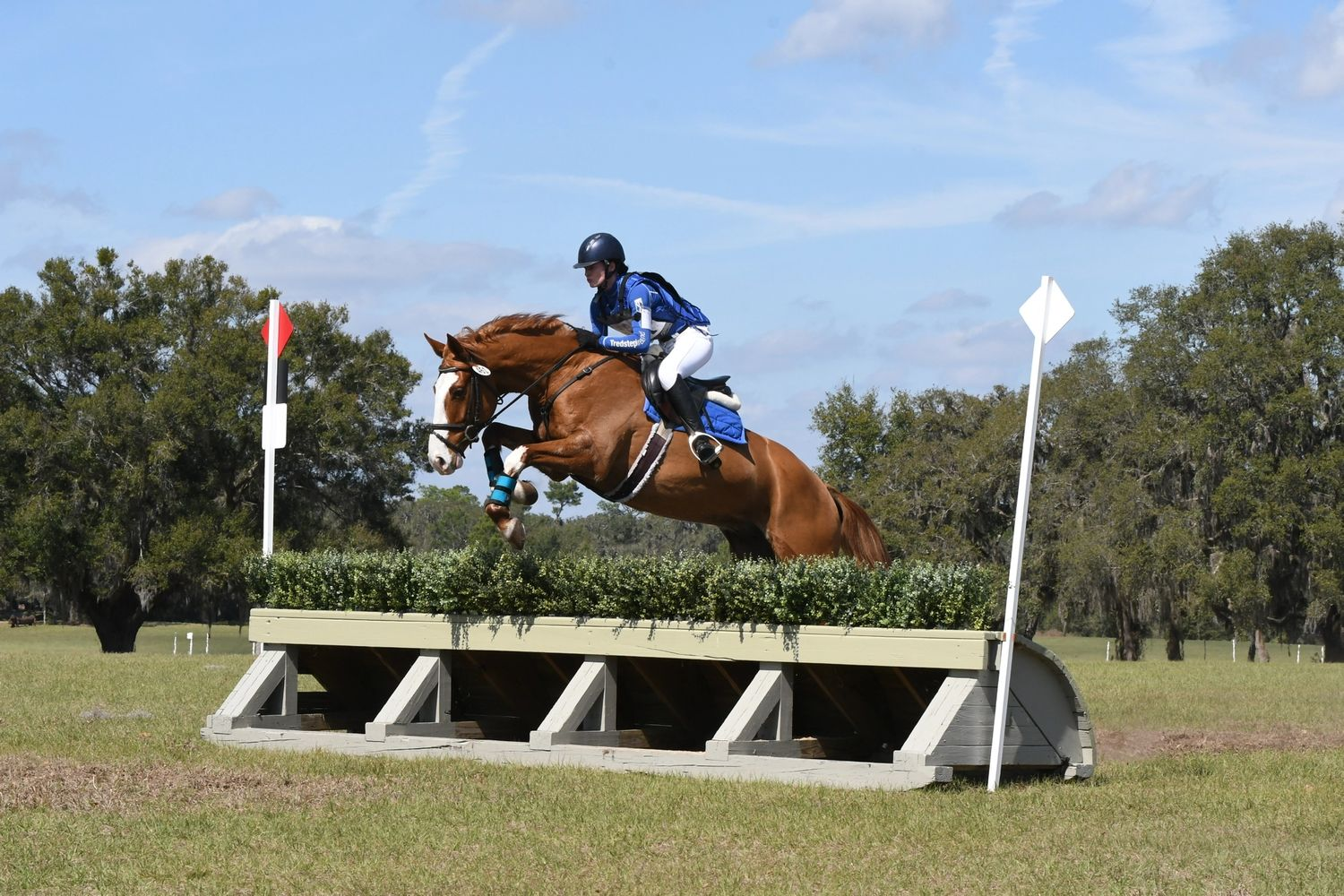 Leanne training a horse at an event in Orlando, Florida.