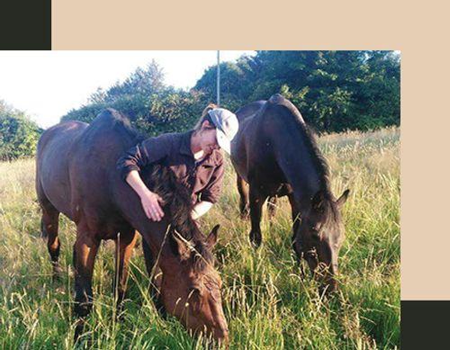 Leanne training horses in Orlando, Florida.