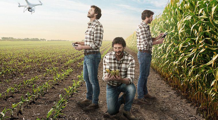 Con Deflexo®  Mix sácale mayor rendimiento a tu cultivo de maíz