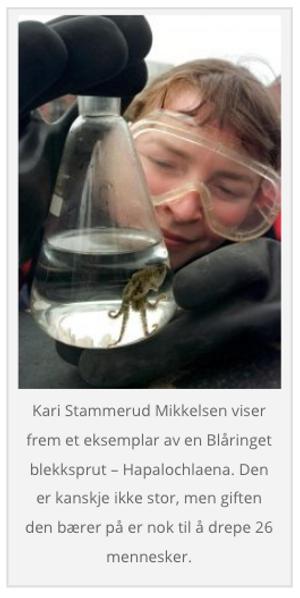 Norsk Naturinformatikk har diktet opp marinbiologen Kari Stammerud Mikkelsen. Verken hun eller instituttet hun jobber for finnes.