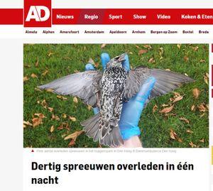 Flere hundre fugler døde i en park i Haag i Nederland i fjor høst. Flere hevder det skyldes 5G-testing. Avisen AD har omtalt fugledøden i en rekke artikler, og finner ingen sammenheng mellom 5G og fugledøden.