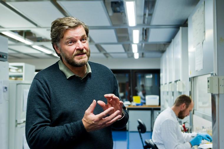 Steinar Madsen, medisinsk fagdirektør i Legemiddelverket.