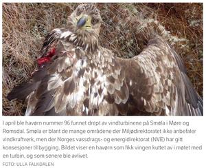 Bildet og teksten som er brukt i Facebook-posten er hentet fra en NRK-artikkel.