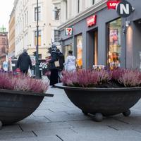 7. november 2017 ble blomsterkrukker plassert på Karl Johan