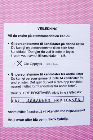 Bak på stemmeseddelen står det hvordan du kan gi personstemmer.