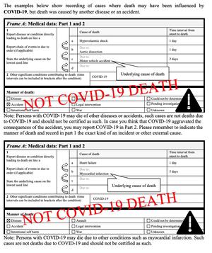 WHOs eksempler viser også at en koronasmittet involvert i en bilulykke, og som dør av skadene, ikke skal registreres som et koronadødsfall. Covid-19 kan likevel legges inn som medvirkende årsak om det kan ha bidratt til å minke sjansene for å overleve på sykehuset etter ulykken.