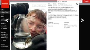 Bildet Norsk Naturinformasjon hevder er av en norsk marinbiolog, er i virkeligheten av en britisk kurator ved akvariet i Birmingham.