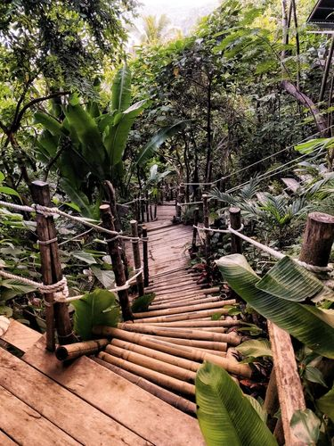 Winding stairs surrounded by a lush landscape at glamping boutique hotel The Birdhouse El Nido, Philippines