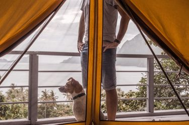 Man with dog outside closed tent at glamping boutique hotel The Birdhouse El Nido in the Philippines