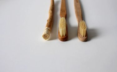 Two bamboo toothbrushes lined next side by side together with a bamboo twig