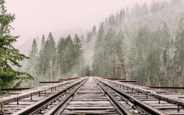 Train tracks in surrounded by a misty forest