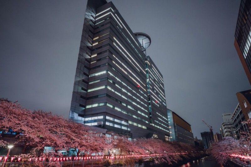 На протяжении многих лет штаб-квартира Square мигрировала между разными офисами. Вскоре после начала работы над Final Fantasy 7 компания переехала в Arco Tower в Мегуро-комплекс, в котором можно было разместить дополнительный персонал Square, необходимый для работы над игрой. | Фотограф: Ирвин Вонг.