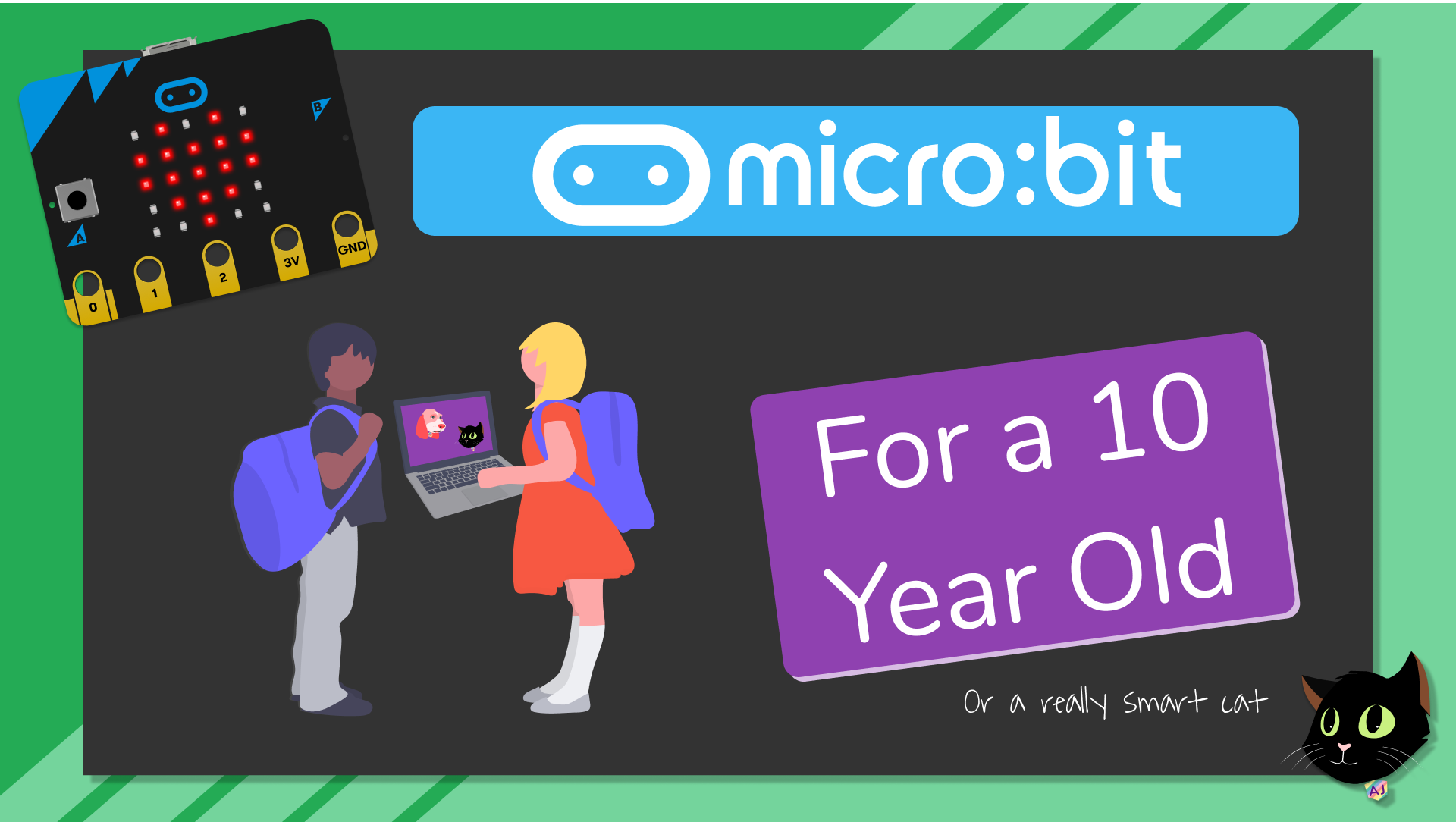 Microbit for a 10 Year Old