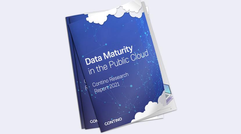 Data Maturity in the Public Cloud Report