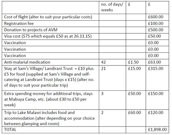 Example volunteer costs