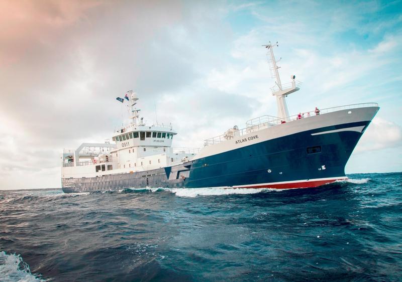 AS Fiskevegn project planning