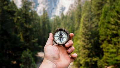Hand holding compass with a backdrop of a pine forest and mountains