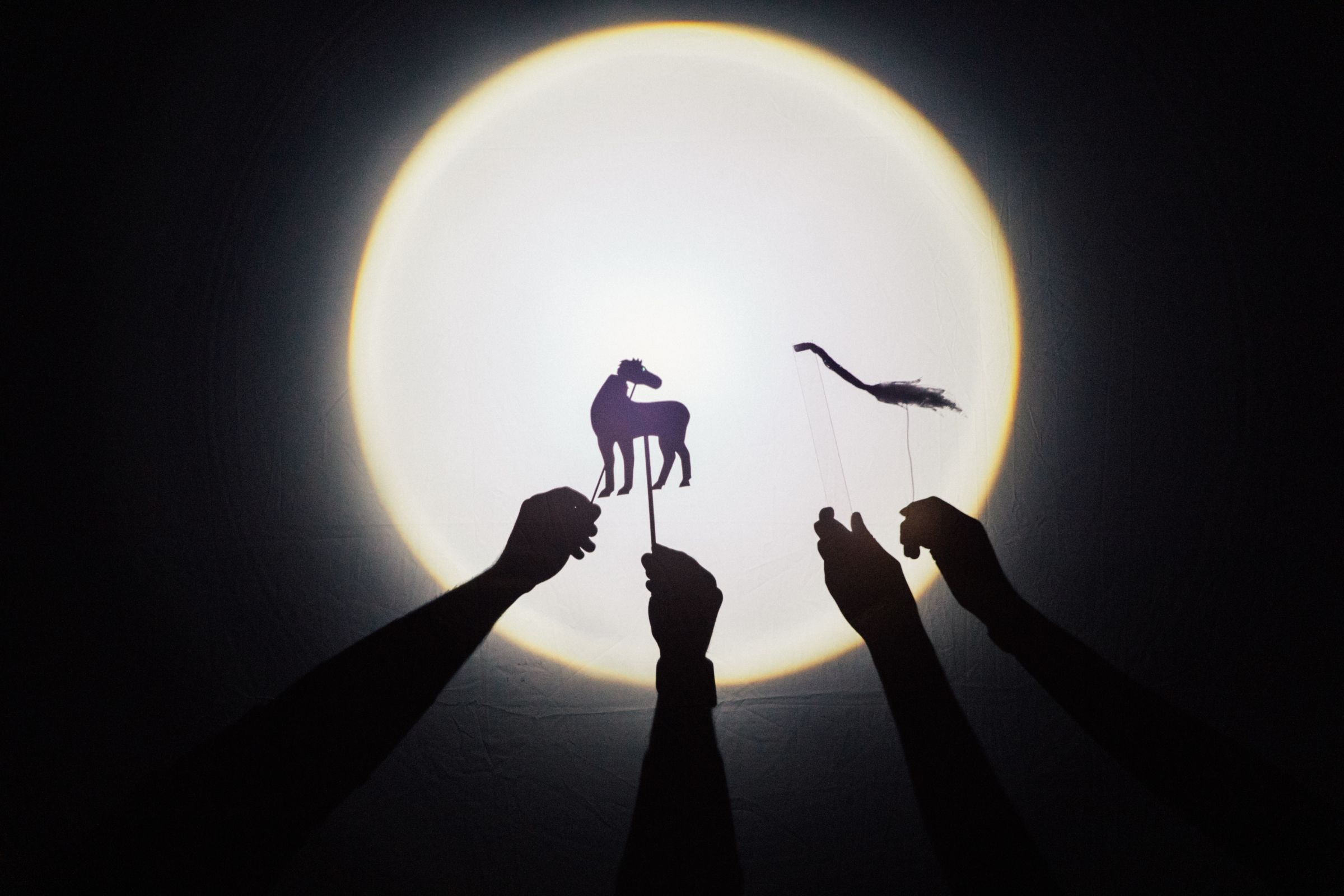 Silhouette of hands and small animal puppets again a moon-like spotlight