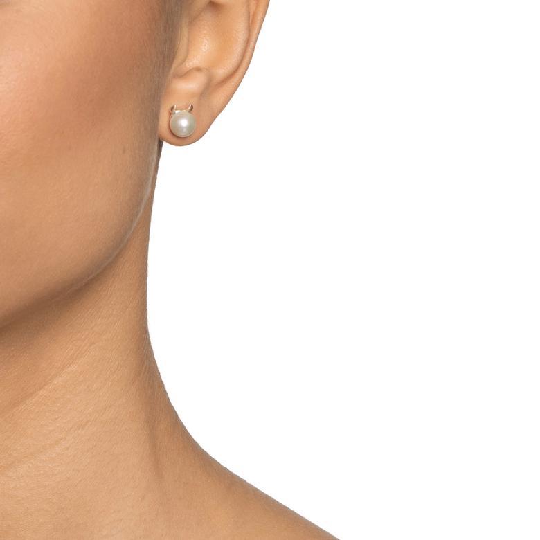 LITTLE DEVIL EAR