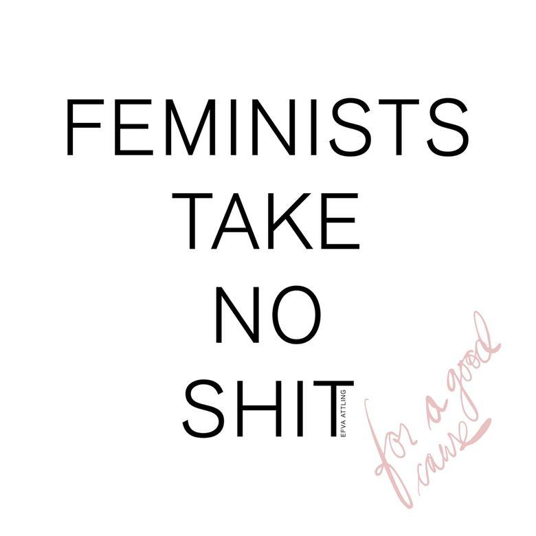 FEMINISTS TAKE NO SHIT - MAN II