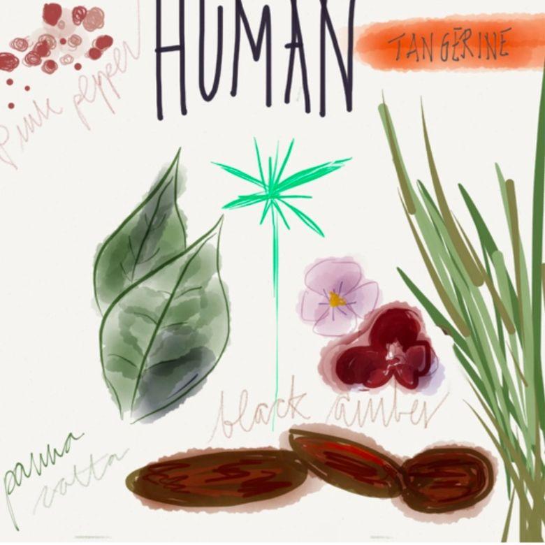 PERFUME - HUMAN