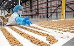 Riverside employee in a factory