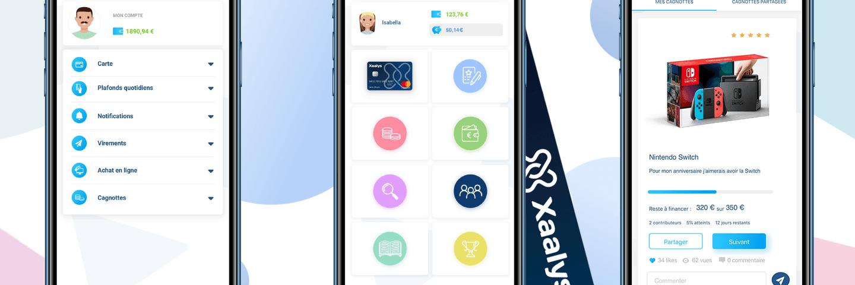Screenshot application Xaalys