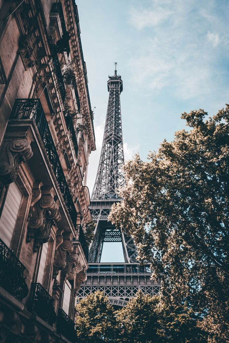 Image of the Eiffel tower from between old building an tree in Paris
