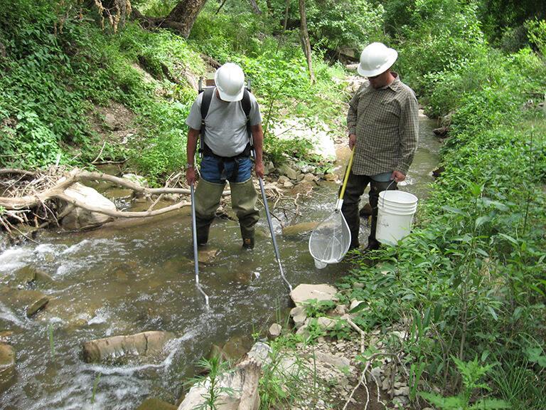 Clear Creek Fish Sampling Plan