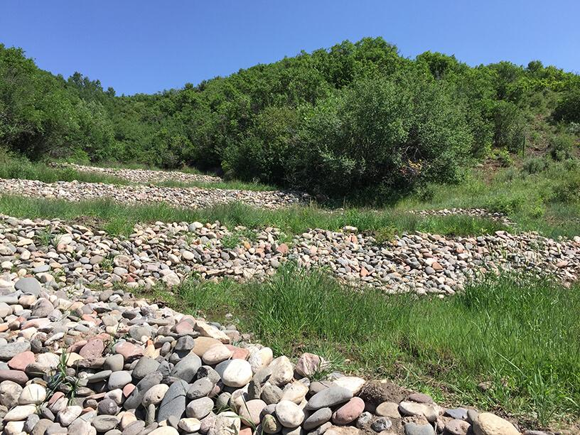 Rio Blanco County – State Highway 13 OHV Trail Compensatory Mitigation Plan