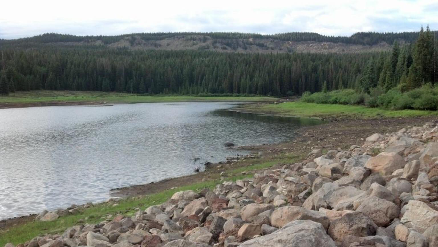 Bull Creek Ditch Company – Bull Creek Dam Repair and Vegetation Monitoring