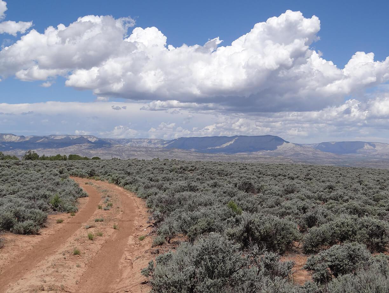Bureau of Land Management, Grand Junction Field Office – Sunnyside Road Reclamation