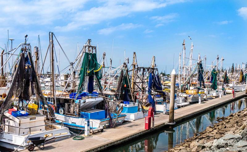 Trawlers job done!