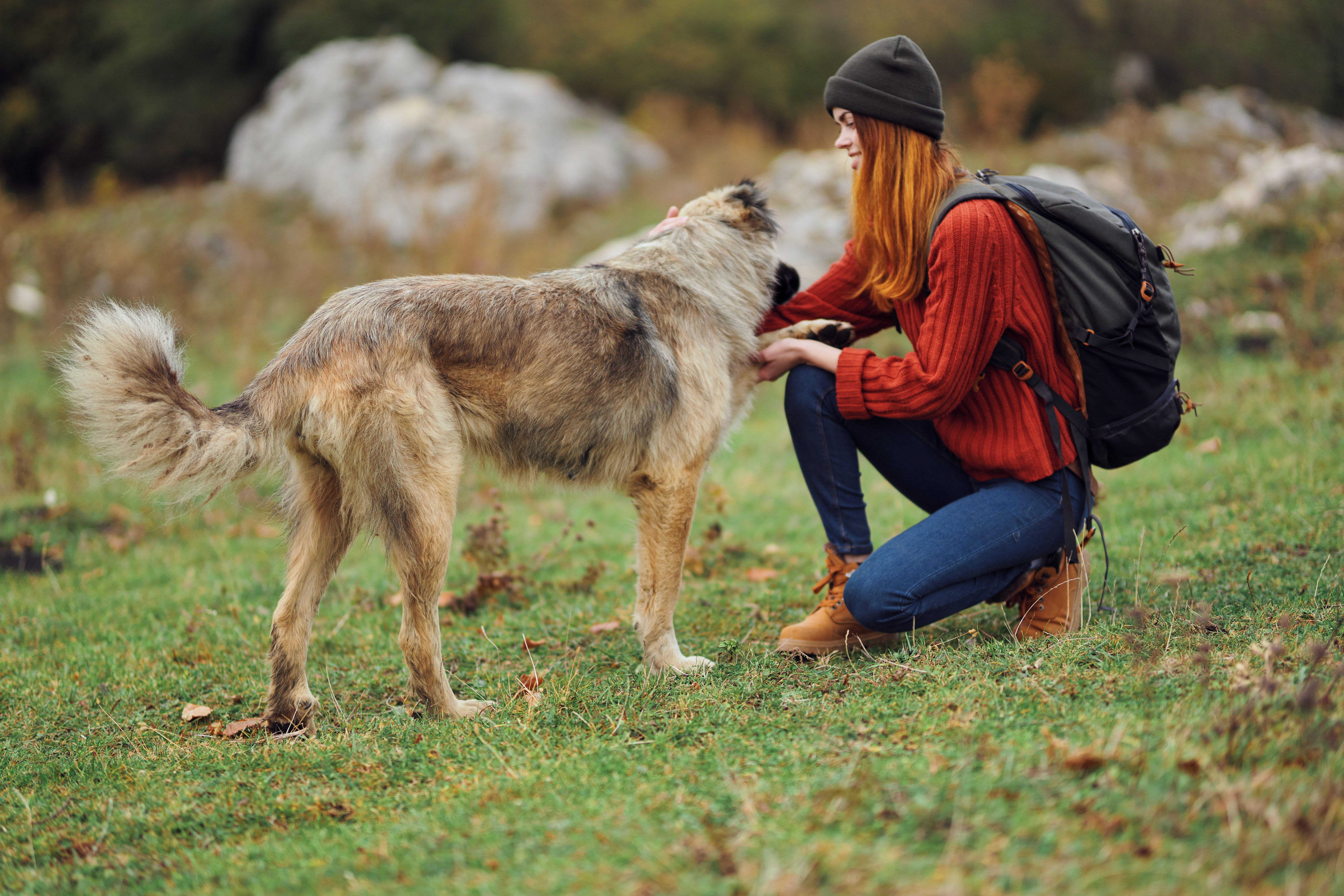 Jente og hund.