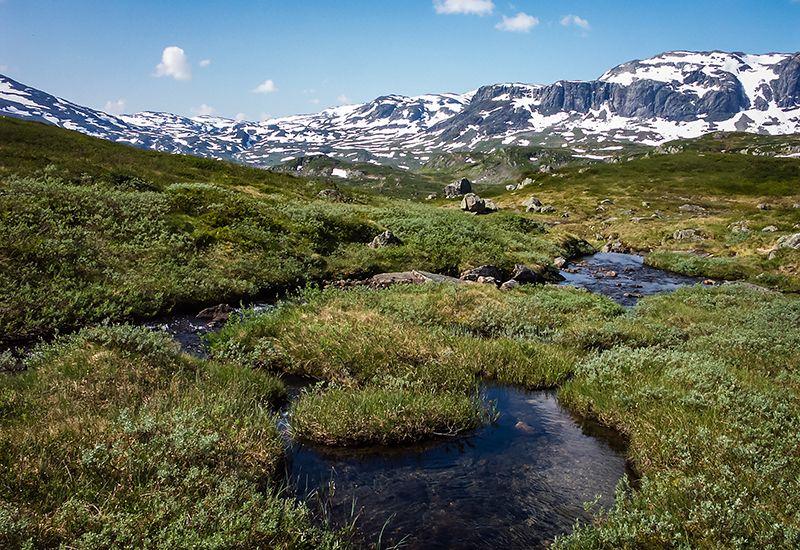 Norsk snaufjell (colourbox.com)
