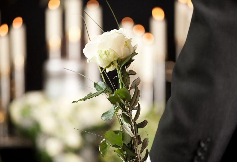 Person som holder hvite roser. Foto: Colourbox