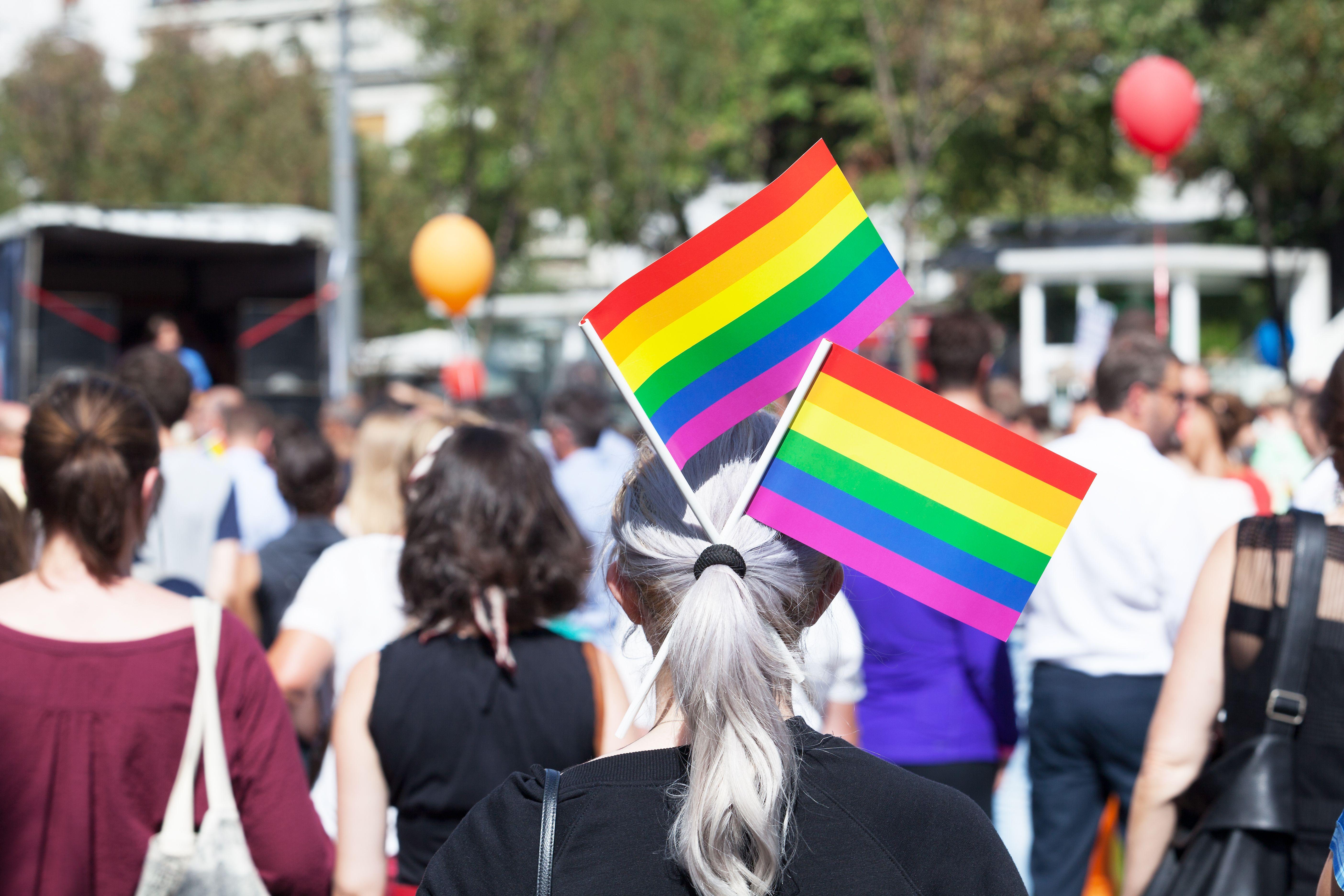 Jente med to små regnbueflagg i håret.