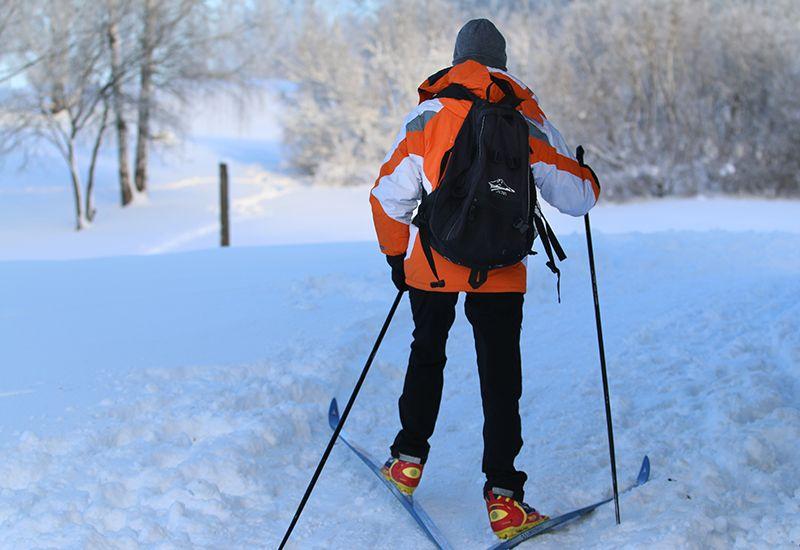 Ungdom på ski (Colourbox)