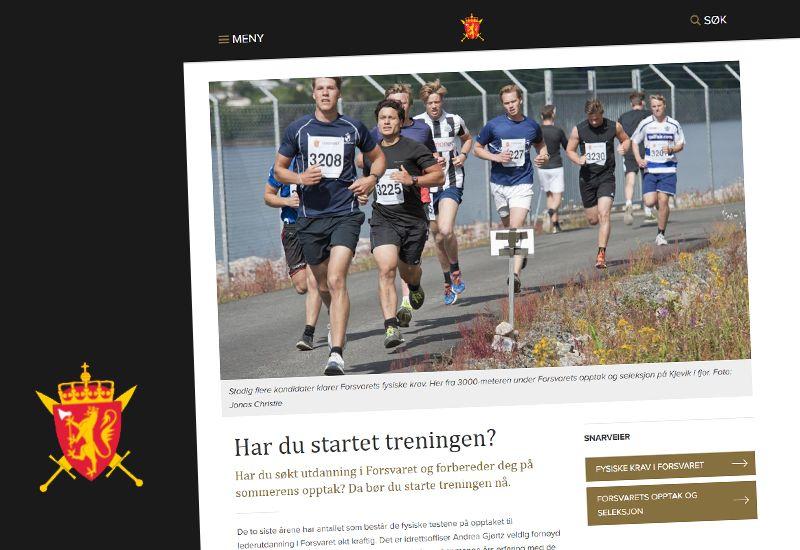 Førsteganngstjeneste (skjermdump fra forsvaret.no)