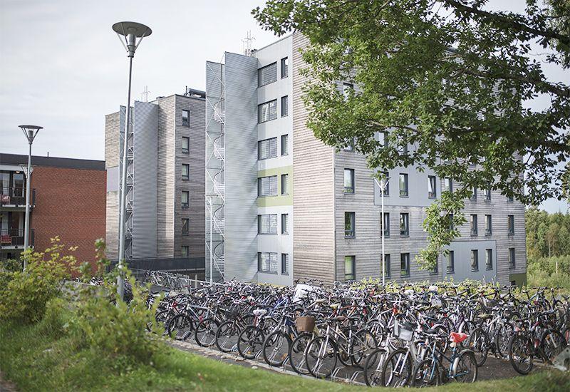 Studentbolig på Ås (Foto: NMBU/Benjamin A. Ward)