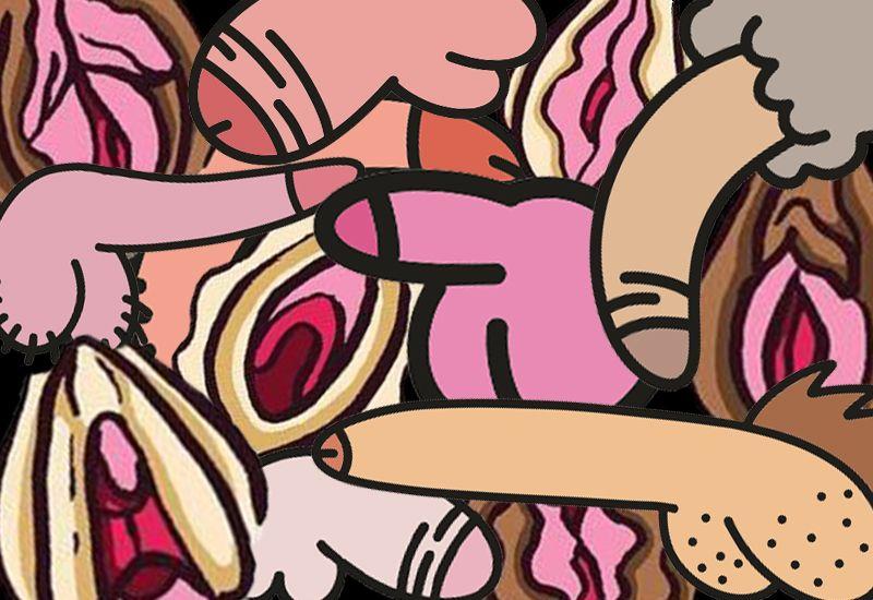 UNIKT: Kjønnsorgan kommer i alle former og fasonger. Kjønnsorganet ditt er unikt, og fint akkurat som det er. Foto: Colourbox/ung.no