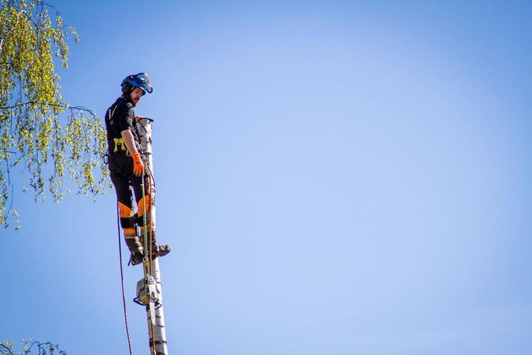 Stendi i Skien har et arbeids- og aktivitetstilbud for ungdom uten et dagtilbud