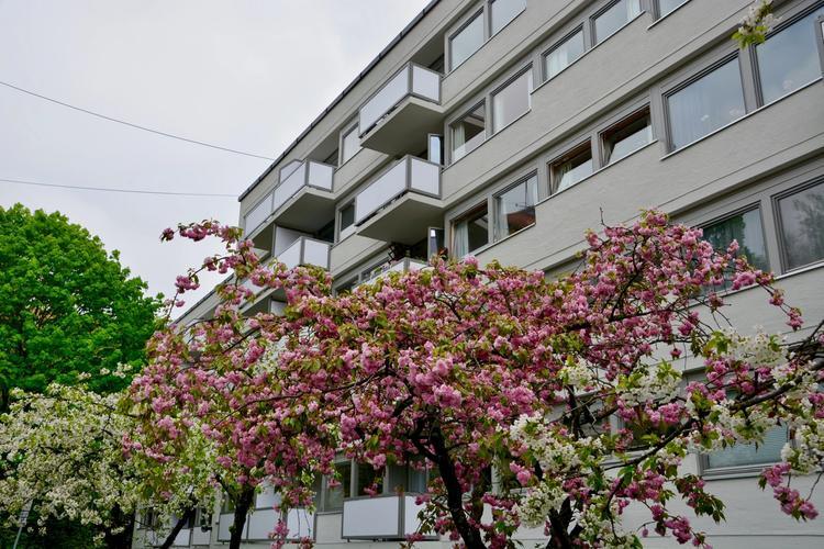 Gabels Park Frogner ligger sentralt til i Oslo sentrum.