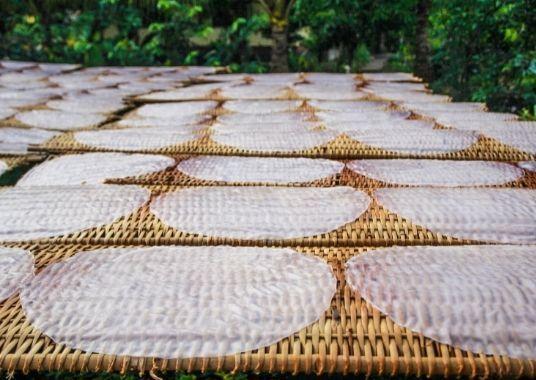 Reispapier - eine so wichtige Zutat, die Du und Deine vietnamesischen Freunde lieben