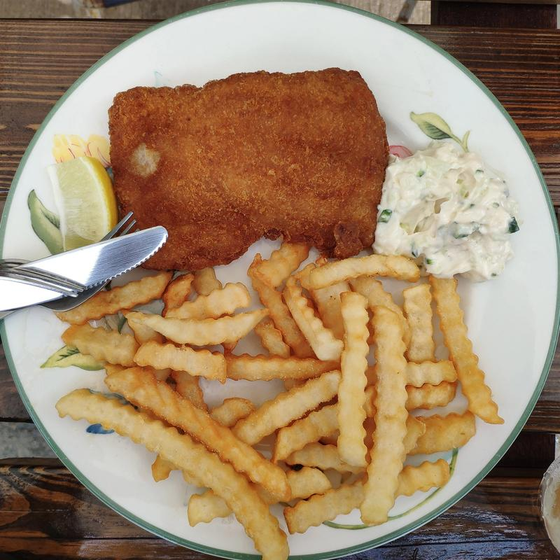 Celebrate Love And Family With Fabulous Fish Creations